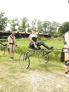 <!–-IMAGE_COUNT-–> of PONYPLAY IN THE OWK II.
