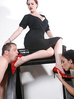<!–-IMAGE_COUNT-–> of Male and females slaves worship mistress` red heel and feet